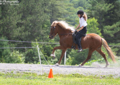 Youth Program | Vermont Icelandic Horse Farm & Lodging in Waitsfield