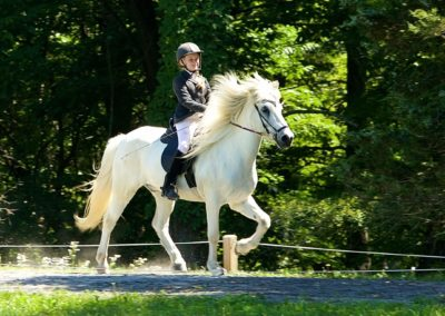 Youth Program Riding a Horse | Vermont Icelandic Horse Farm & Vacation Rental in Waitsfield