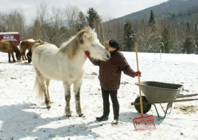 JoAnna with Elska, her pride and joy | Vermont Horse Farm & Vacation Rental in Fayston, Vermont