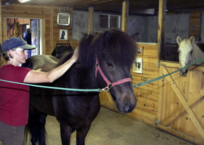 Karen and Horse | Vermont Icelandic Horse Farm & Vacation Rental in Waitsfield