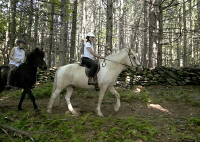 Riding a Horse | Vermont Icelandic Horse Farm & Lodging in Waitsfield