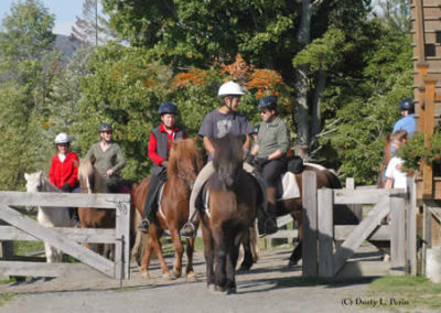 Riding a Horse | Vermont Horse Farm & Vacation Rental in Fayston, Vermont