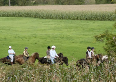 Trail Rides | Vermont Horse Farm & Vacation Rental in Fayston, Vermont