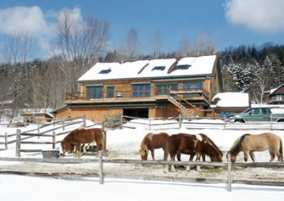 Winter Horse Farm | Vermont Horse Farm & Vacation Rental in Fayston, Vermont