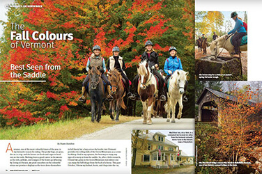 Press & Photos | Vermont Icelandic Horse Farm & Lodging in Waitsfield